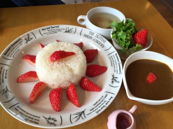 山元いちご農園「Berry Very Labo(ベリーベリーラボ)」のいちごカレー