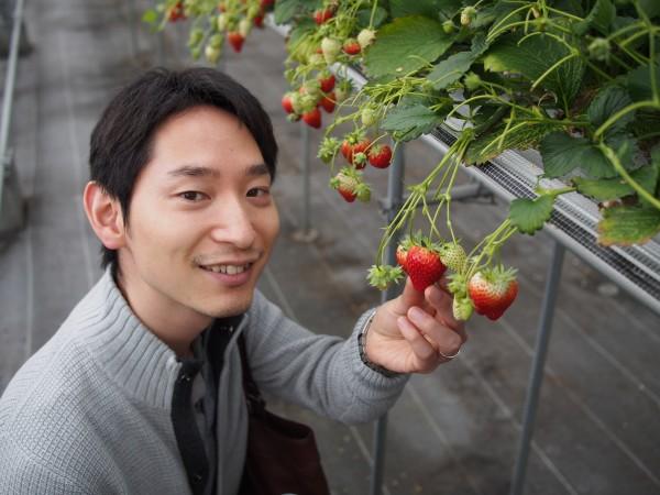 山元町にてイチゴ狩り